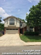 3227 Falcon Grove Dr, San Antonio, TX 78247 (MLS #1332184) :: Erin Caraway Group