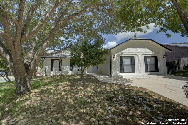 6803 Hillside Peak, San Antonio, TX 78233 (MLS #1332352) :: Alexis Weigand Real Estate Group