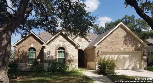 9614 Ninas Ct, San Antonio, TX 78254 (MLS #1332469) :: The Castillo Group