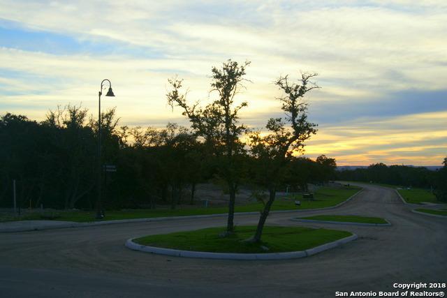 116 Lajitas Drive, Boerne, TX 78006 (MLS #1332905) :: ForSaleSanAntonioHomes.com