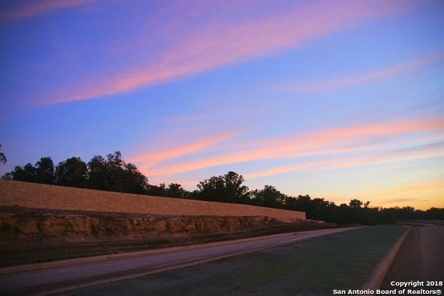103 Lajitas Drive, Boerne, TX 78006 (MLS #1332907) :: ForSaleSanAntonioHomes.com