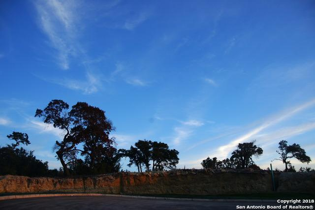 107 Lajitas Drive, Boerne, TX 78006 (MLS #1332908) :: ForSaleSanAntonioHomes.com