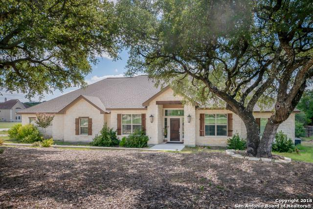 1380 Frontier, Spring Branch, TX 78070 (MLS #1333399) :: The Castillo Group