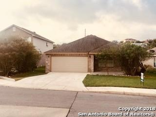 25632 Candytuft Ct, San Antonio, TX 78260 (MLS #1334571) :: Alexis Weigand Real Estate Group
