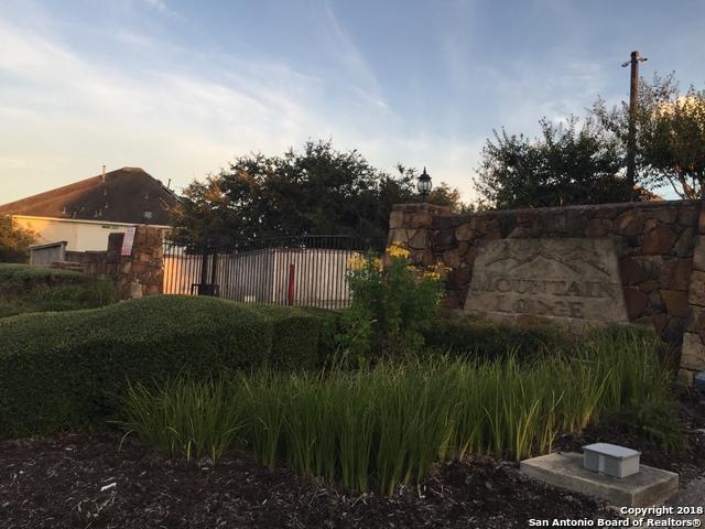 23450 Seven Winds, San Antonio, TX 78258 (MLS #1334969) :: Exquisite Properties, LLC