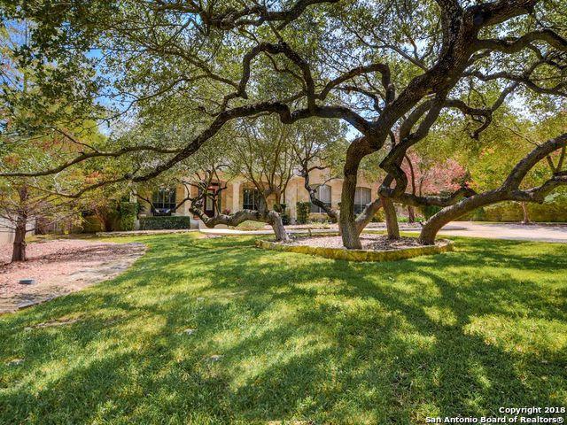 476 Long Meadows, Spring Branch, TX 78070 (MLS #1335034) :: Magnolia Realty