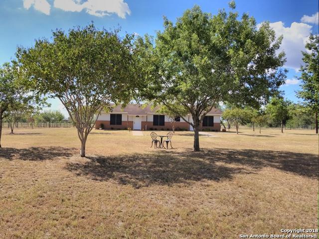 16190 N State Highway 80, Leesville, TX 78122 (MLS #1335083) :: Alexis Weigand Real Estate Group