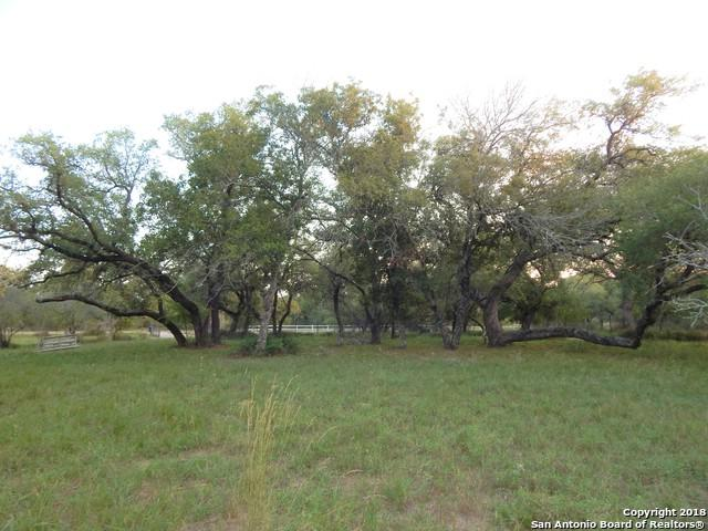 377 County Road 785, Natalia, TX 78059 (MLS #1335859) :: Alexis Weigand Real Estate Group
