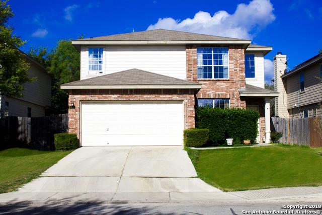 423 Dandelion Bend, San Antonio, TX 78245 (MLS #1336183) :: Erin Caraway Group