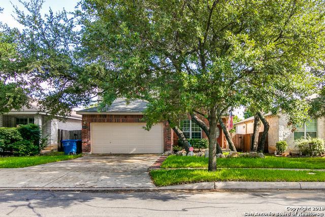 8714 Eagle Peak, San Antonio, TX 78023 (MLS #1336432) :: Magnolia Realty