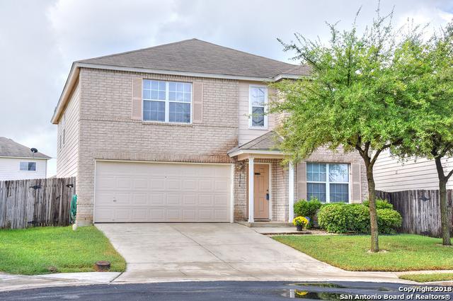 8706 Loon Ct, San Antonio, TX 78245 (MLS #1336637) :: Alexis Weigand Real Estate Group