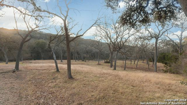 427 Pr 1706 (Shepherd's Crook), Helotes, TX 78023 (MLS #1338006) :: Alexis Weigand Real Estate Group