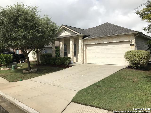 509 Tom Kemp Dr, New Braunfels, TX 78130 (MLS #1338596) :: Exquisite Properties, LLC