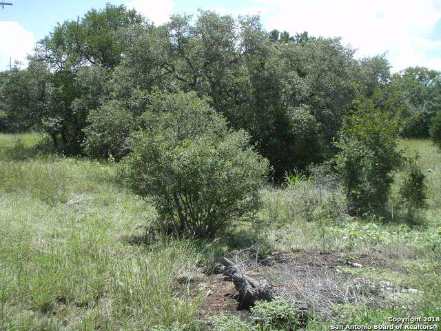 TBD County Road 2725, Mico, TX 78056 (MLS #1338654) :: Magnolia Realty