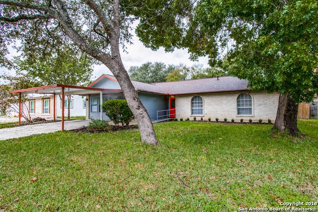 12111 Cherry Blossom St, San Antonio, TX 78247 (MLS #1338756) :: The Suzanne Kuntz Real Estate Team
