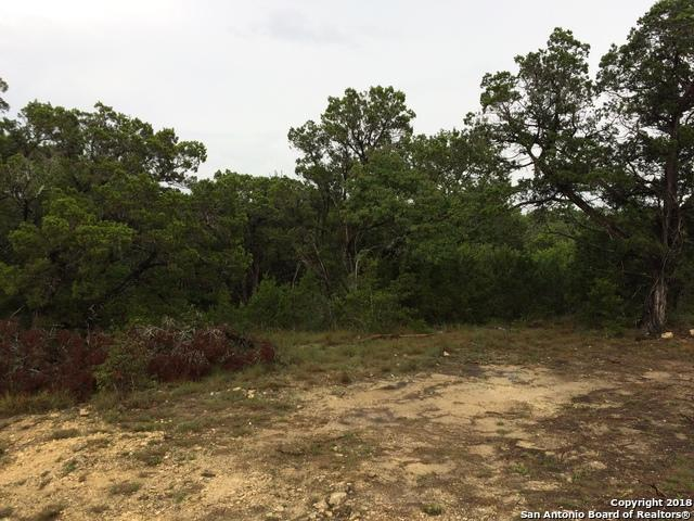 1039 Primrose Path, Canyon Lake, TX 78133 (MLS #1338950) :: Magnolia Realty