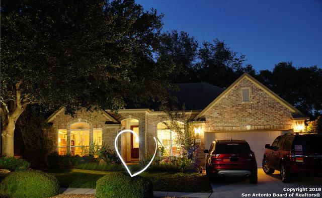 219 Deer Mesa, Cibolo, TX 78108 (MLS #1341280) :: Exquisite Properties, LLC