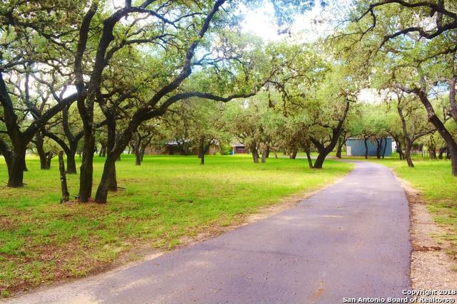 113 Cynthia Dr, Pleasanton, TX 78064 (MLS #1342294) :: Tom White Group