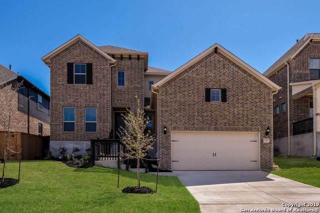 23042 Evangeline, San Antonio, TX 78258 (MLS #1342472) :: Glover Homes & Land Group