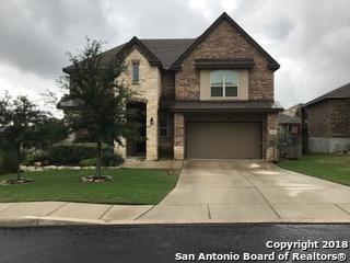 23910 Alpine Ldg, San Antonio, TX 78258 (MLS #1343145) :: Exquisite Properties, LLC