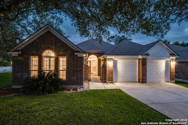 1202 Asherton Way, San Antonio, TX 78258 (MLS #1343888) :: Alexis Weigand Real Estate Group