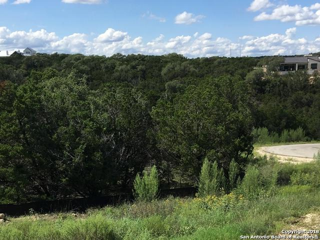1419 Capitare, New Braunfels, TX 78132 (MLS #1344232) :: Magnolia Realty