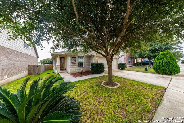 365 Cattle Run, Cibolo, TX 78108 (MLS #1344261) :: The Suzanne Kuntz Real Estate Team