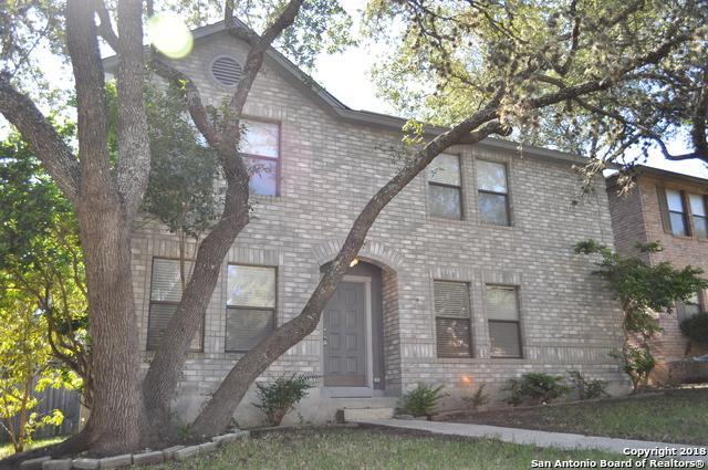 9522 Alderwood, San Antonio, TX 78250 (MLS #1344947) :: The Suzanne Kuntz Real Estate Team