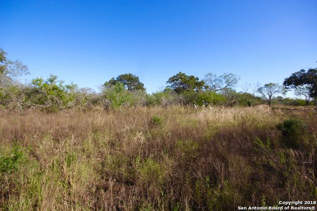 786 County Road 132, Floresville, TX 78114 (MLS #1345417) :: Alexis Weigand Real Estate Group