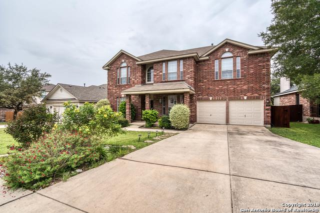 323 Neches Branch, San Antonio, TX 78258 (MLS #1345592) :: Alexis Weigand Real Estate Group