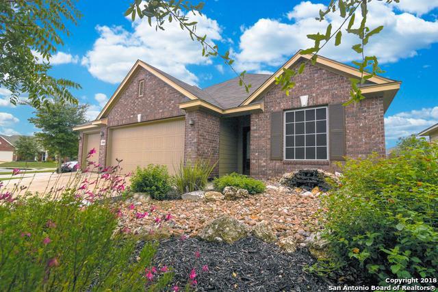 11810 Wild Pistachio, San Antonio, TX 78254 (MLS #1346150) :: ForSaleSanAntonioHomes.com