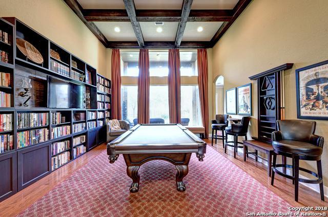 19 Sable Canyon, San Antonio, TX 78258 (MLS #1346217) :: Alexis Weigand Real Estate Group