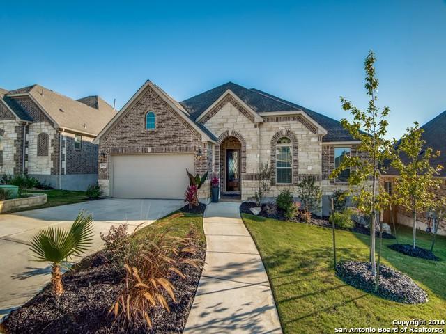 25942 Preserve Peak, San Antonio, TX 78261 (MLS #1346756) :: The Suzanne Kuntz Real Estate Team