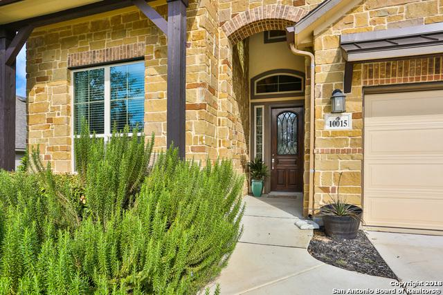 10015 Jeep Jump Ln, Boerne, TX 78006 (MLS #1346792) :: Alexis Weigand Real Estate Group