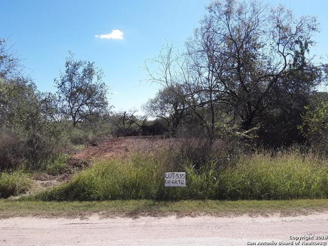 429 County Road 6842, Lytle, TX 78052 (MLS #1346892) :: Exquisite Properties, LLC