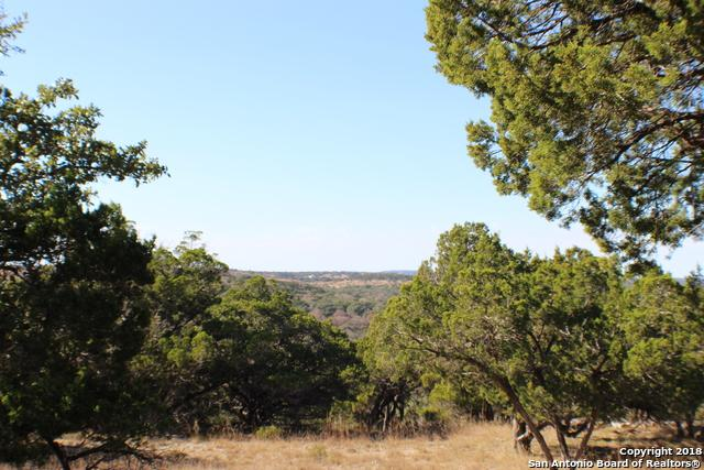 000 Scenic Bluffs Dr, Boerne, TX 78006 (MLS #1347535) :: Alexis Weigand Real Estate Group