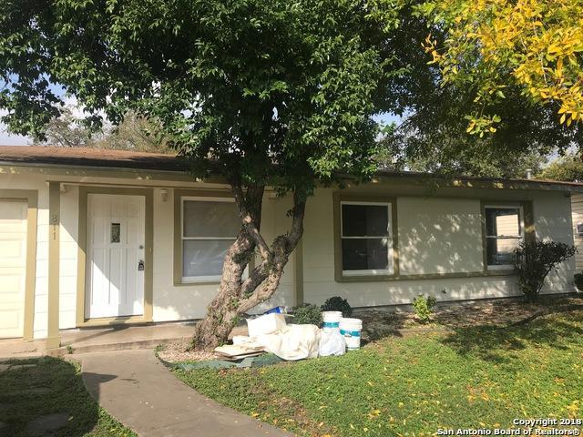 811 Hermine Blvd, San Antonio, TX 78201 (MLS #1347825) :: The Suzanne Kuntz Real Estate Team