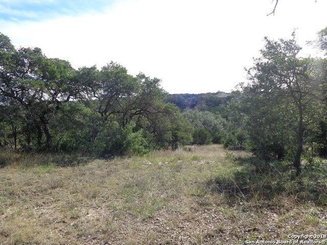 LOT 45 Turkey Cv, New Braunfels, TX 78132 (MLS #1347910) :: Magnolia Realty