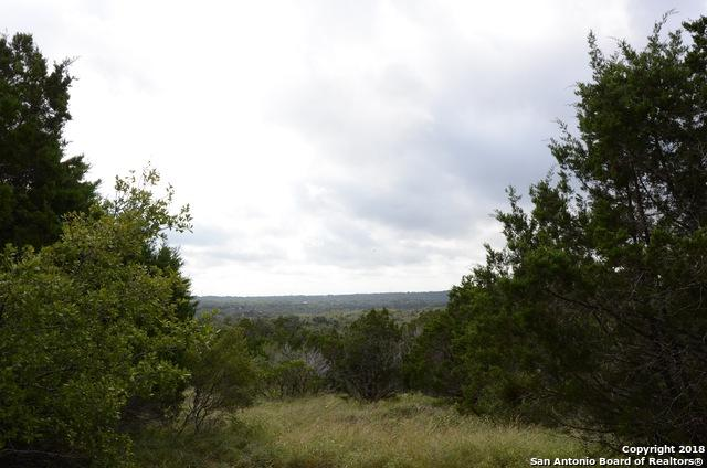 125 Lupin Circle, New Braunfels, TX 78132 (MLS #1348176) :: NewHomePrograms.com LLC