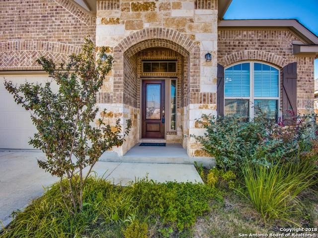 8715 Study Butte, San Antonio, TX 78254 (MLS #1348916) :: Exquisite Properties, LLC