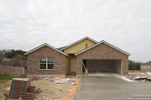 16323 Lantana Pt, San Antonio, TX 78247 (MLS #1349352) :: Alexis Weigand Real Estate Group
