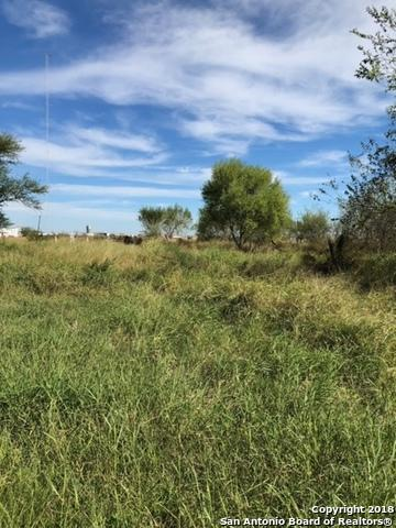3322 County Road 38, Robstown, TX 78380 (MLS #1349631) :: Alexis Weigand Real Estate Group