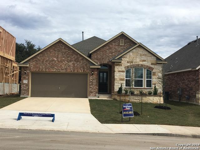 16914 Kinmount Lane, Helotes, TX 78023 (MLS #1349661) :: Alexis Weigand Real Estate Group