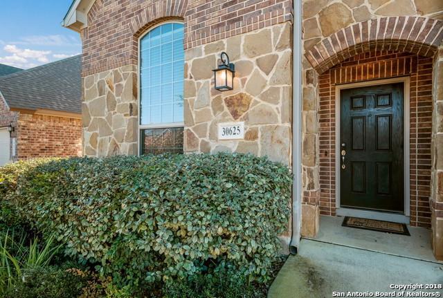 30625 Holstein Rd, Bulverde, TX 78163 (MLS #1349765) :: Alexis Weigand Real Estate Group