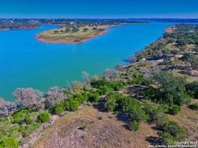 2050 San Jose Way, Canyon Lake, TX 78133 (MLS #1349940) :: Alexis Weigand Real Estate Group