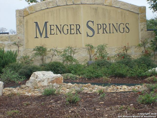 602 Menger Spgs, Boerne, TX 78006 (MLS #1350267) :: Exquisite Properties, LLC