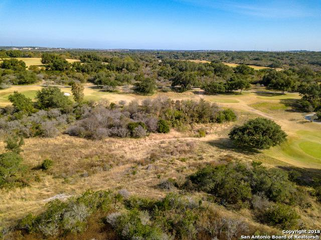 13355 Roundup Pass, San Antonio, TX 78245 (MLS #1350708) :: Alexis Weigand Real Estate Group