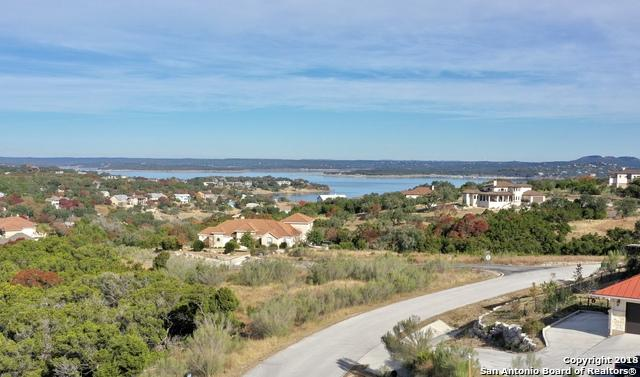 1007 Thunderbolt Rd, Canyon Lake, TX 78133 (MLS #1352113) :: The Castillo Group