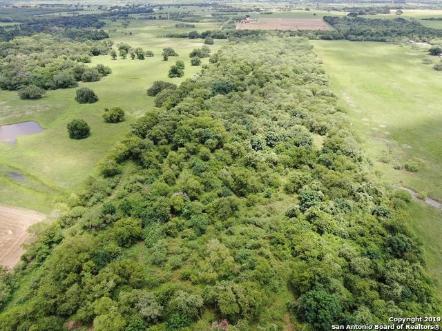 4624 PITTMAN RD Pittman Rd., St Hedwig, TX 78152 (MLS #1352379) :: Alexis Weigand Real Estate Group