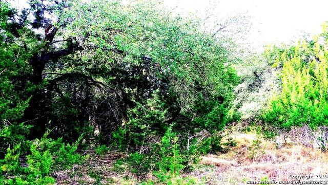 181 Ramrod, Spring Branch, TX 78070 (MLS #1353251) :: Magnolia Realty